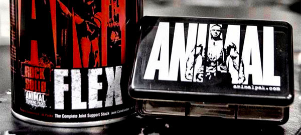 UNIVERSAL NUTRITION ANIMAL FLEX POWDER